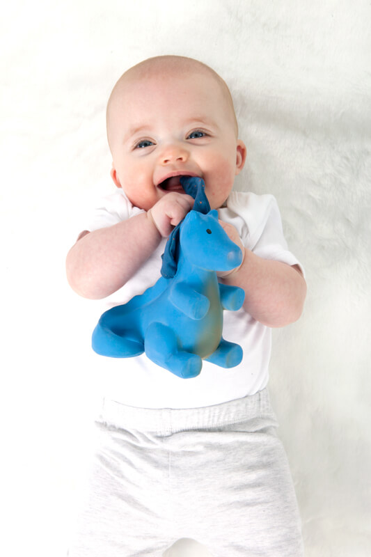 baby with dragon teether