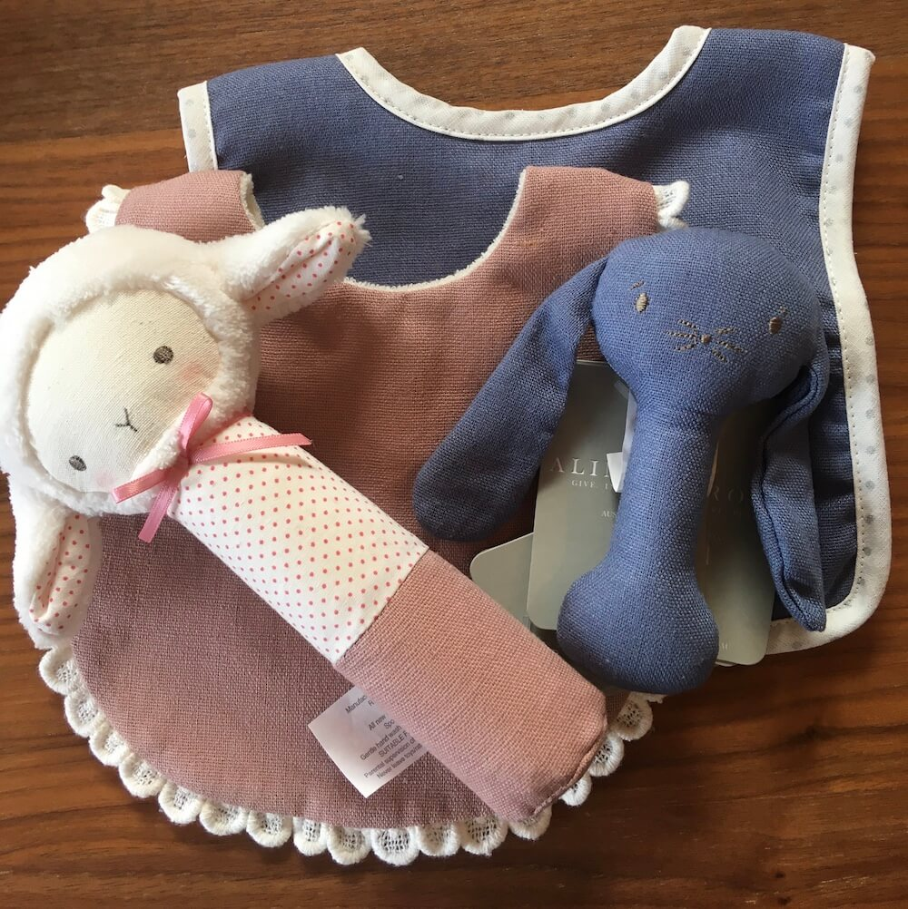 twin bib and squeaker set