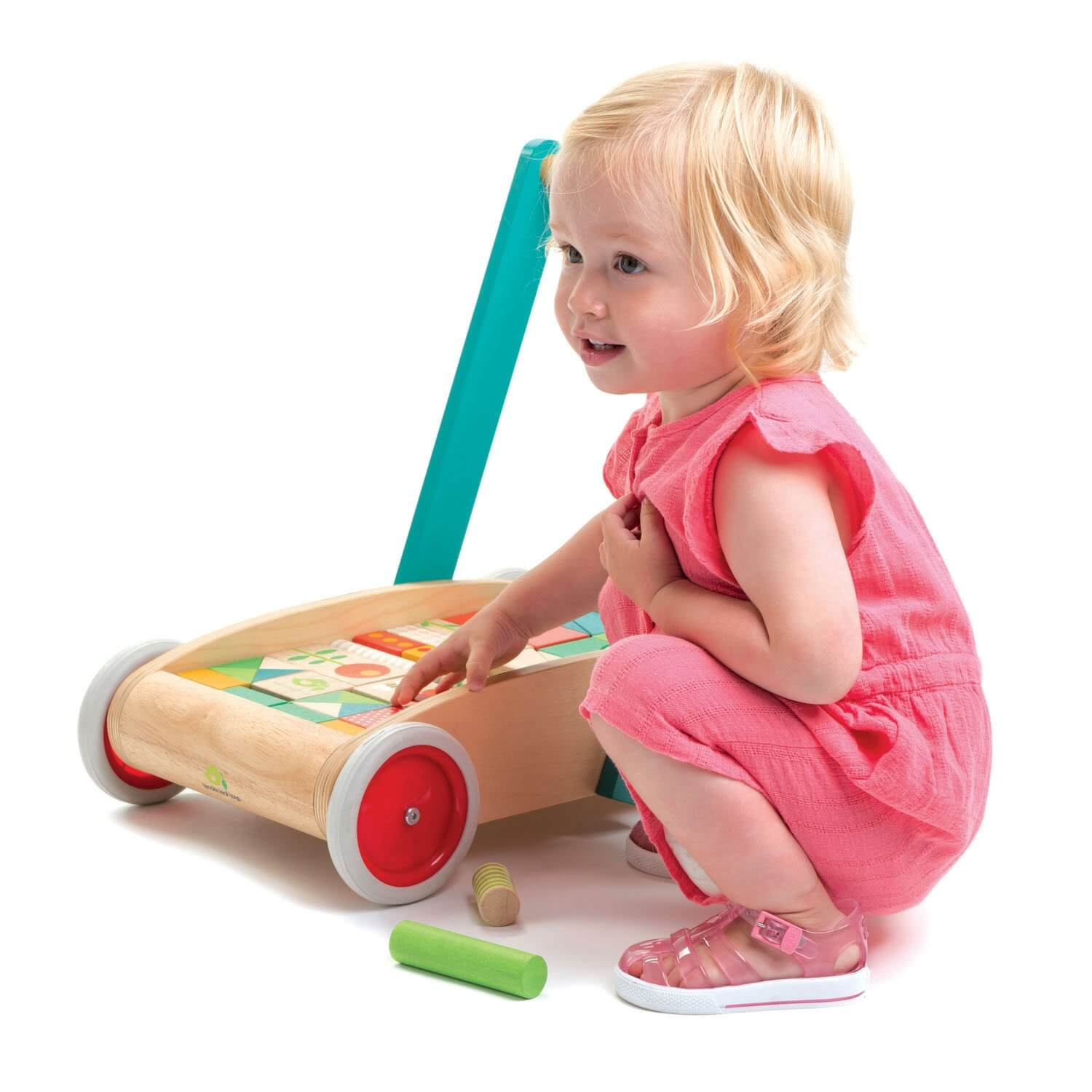 tender leaf toys baby walker with blocks