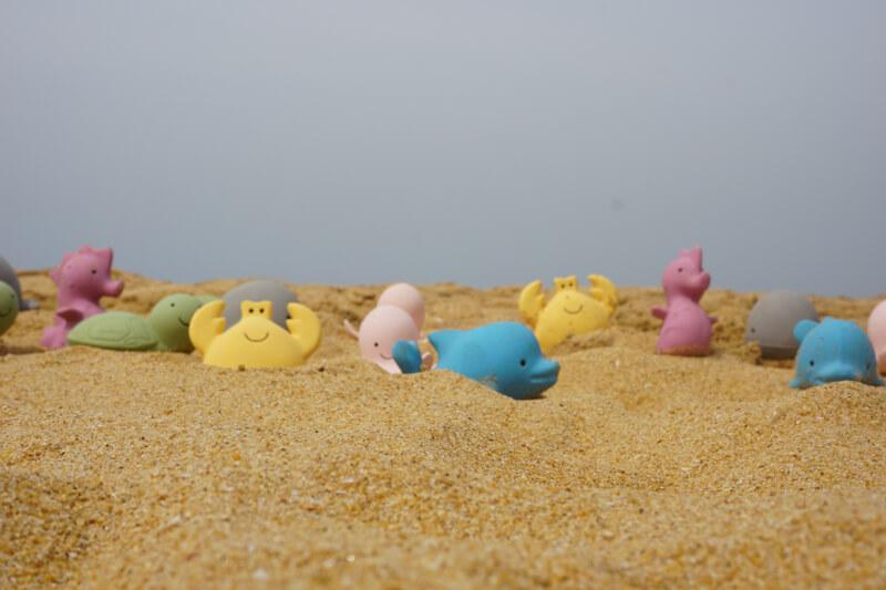 ocean buddies at the beach