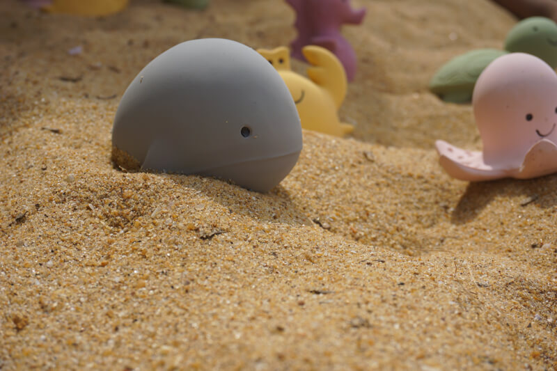 whale ocean buddy in sand