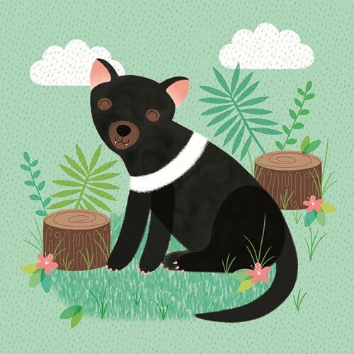tassie devil sledge illustrations card