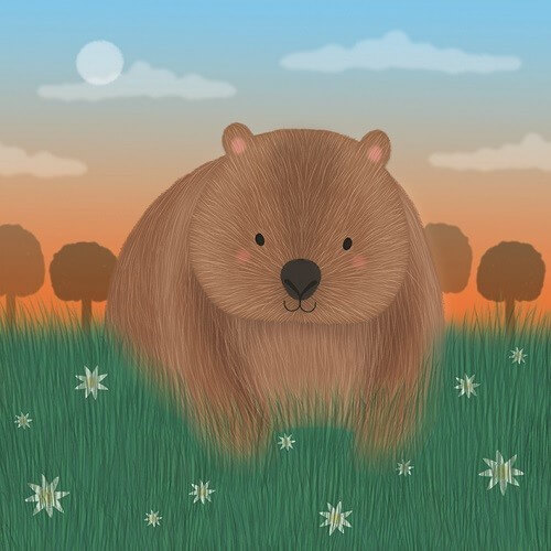 wombat sledge illustrations card